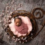 Cherry-Wreath_FB